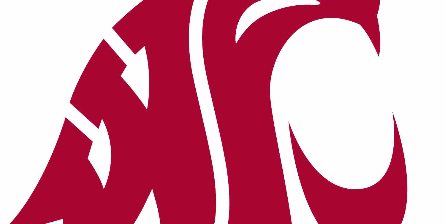 WSU-Logo low